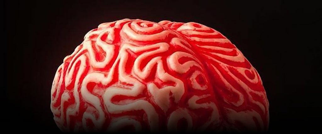 blog-cerebro-activo